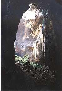The rear of Simud Hitam Cave at Gomantong Caves near Sukau on the Kinabatangan River