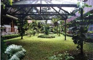 Courtyard at Sukau Rainforest Lodge