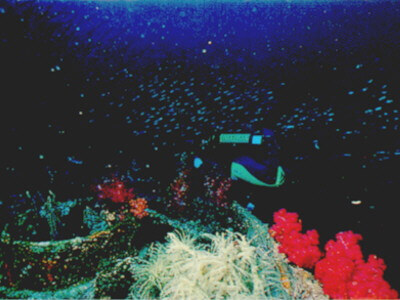 Part of the American Wreck