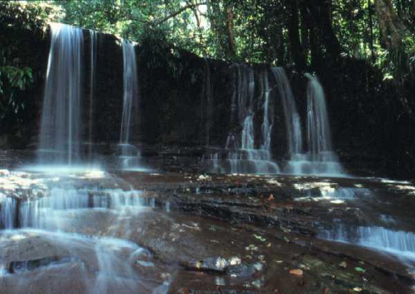 Waterfall in Lambir Park